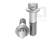 DIN 34800-2005 梅花头细杆小法兰螺栓(L≤10d)