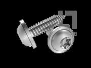 DIN 34819-2008 梅花槽圆头凸缘自攻螺钉C型