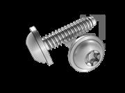 DIN 34819-2008 梅花槽圆头凸缘自攻螺钉F型
