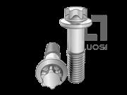 DIN 34800-2016 梅花头细杆小法兰螺栓(L≤10d)